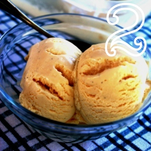 hot 10 02 b vanilla ice cream two 2 300w 300h crop2 jpg